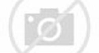 Download Wallpapers Skeleton Angel X Free Widescreen Hd Cute Little ...